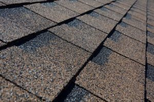 Shingle Roofing Canton Michigan
