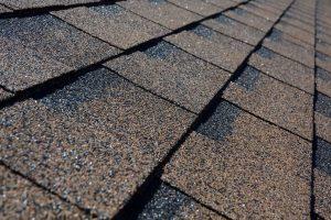 Shingle Roofing Canton Michigan