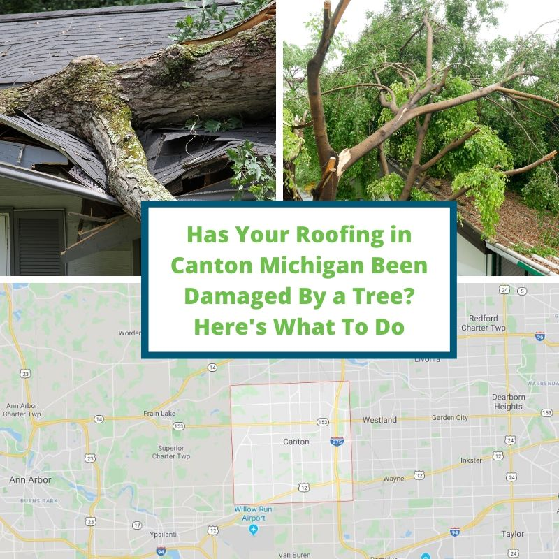 Has Your Roofing in Canton Michigan Been Damaged By a Tree? Here's What To Do