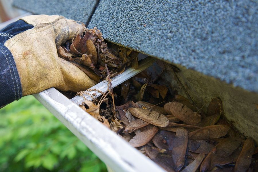 What to Look for In A Roof Inspection in Canton Michigan