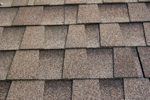 Need a New Roof in Canton Michigan Consider These Roofing Materials