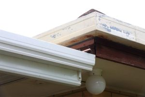 5 Reasons Why You Should Clean Your Gutters in Canton Michigan