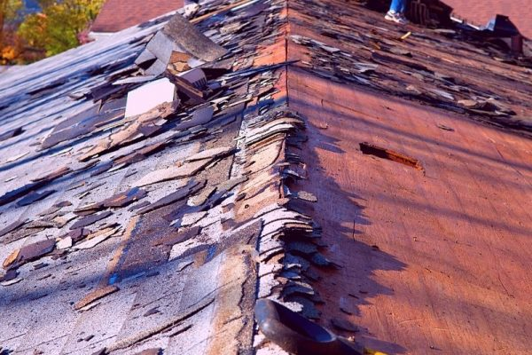 Top 5 Reasons Why Hiring A Professional Roofer in Canton Michigan Is Better Than DIY